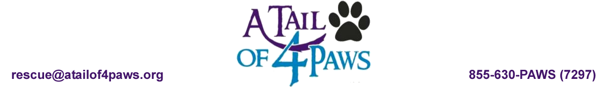 A Tail Of 4 Paws